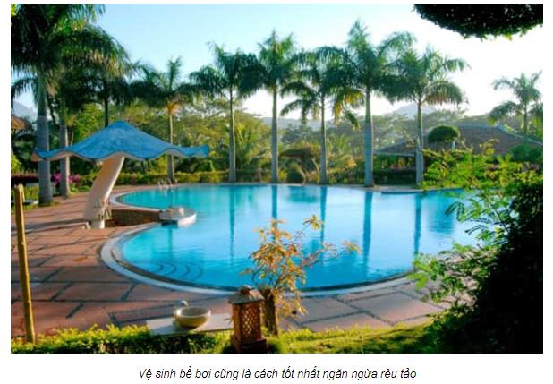 VianPool Quy trình xử lý nước bể bơi đúng cách
