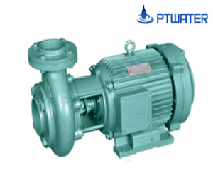 VianPool Centrifugal pump LBH-30HP