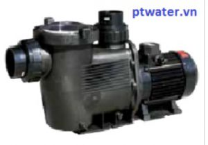 VianPool Hydrostar 2HP pump