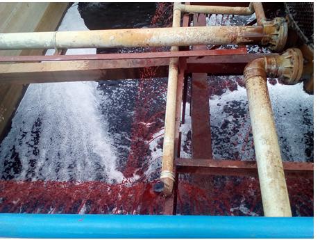 VianPool (Tiếng Việt) Công nghệ xử lý nước thải hóa lý kết hợp với sinh học